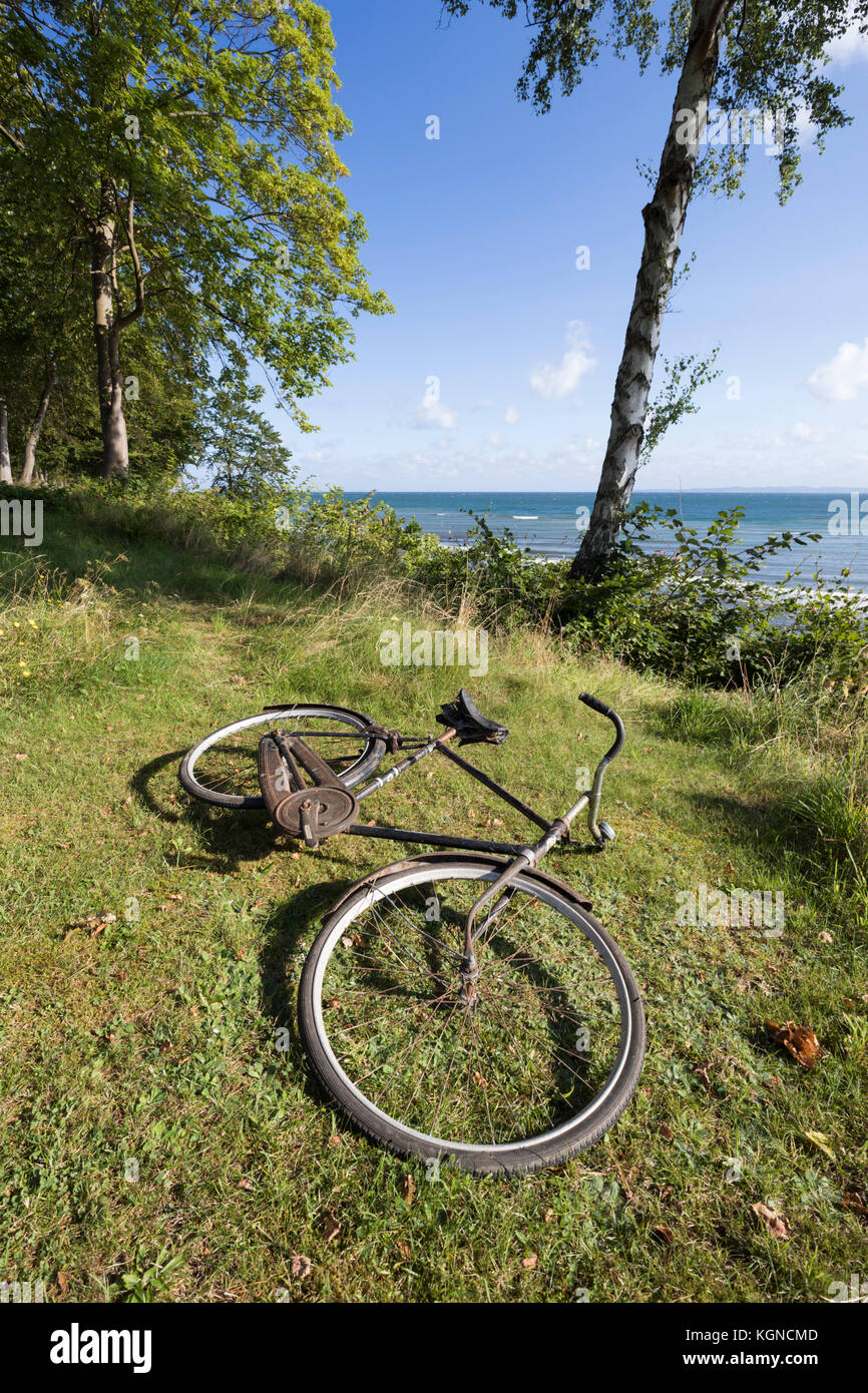Old bicycle leaning against white bench overlooking the sea framed by silver birch and pine trees, Munkerup, Kattegat - Stock Image