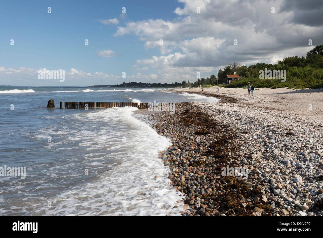 View over Munkerup beach, Munkerup, Kattegat Coast, Zealand, Denmark, Europe - Stock Image