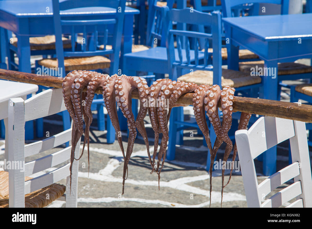 Octopus hanging for drying at the harbor of Naoussa, Paros, Cyclades, Greece, Mediterranean Sea, Europe - Stock Image