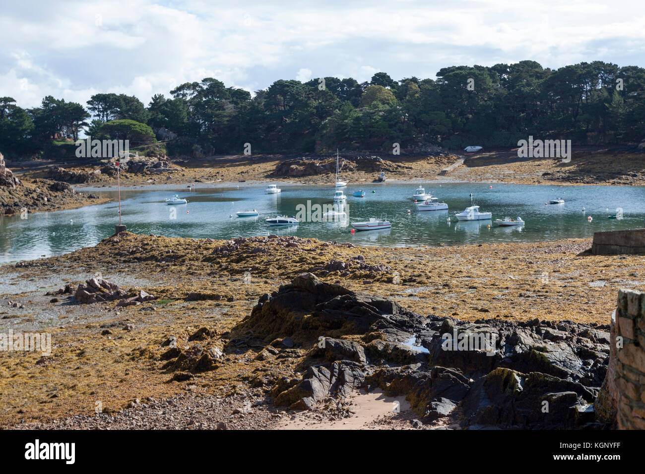 A view of the Brehat south eastern shore, at low tide (Brittany - France). Here small crafts took advantage of a - Stock Image