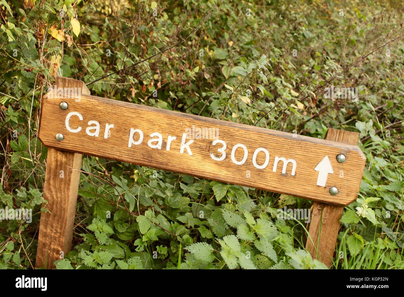 Car Park 300 m sign in white letters with an arrow on low wooden posts in grass verge surrounded by nettles next - Stock Image