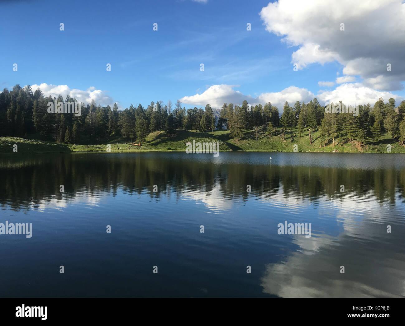Trout Lake at Yellowstone National Park Stock Photo