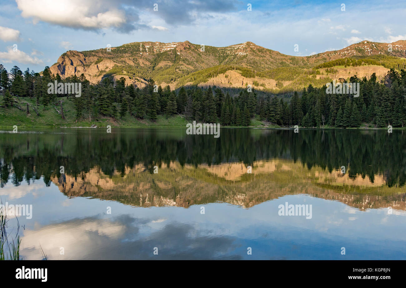 Trout Lake at Yellowstone National Park - Stock Image