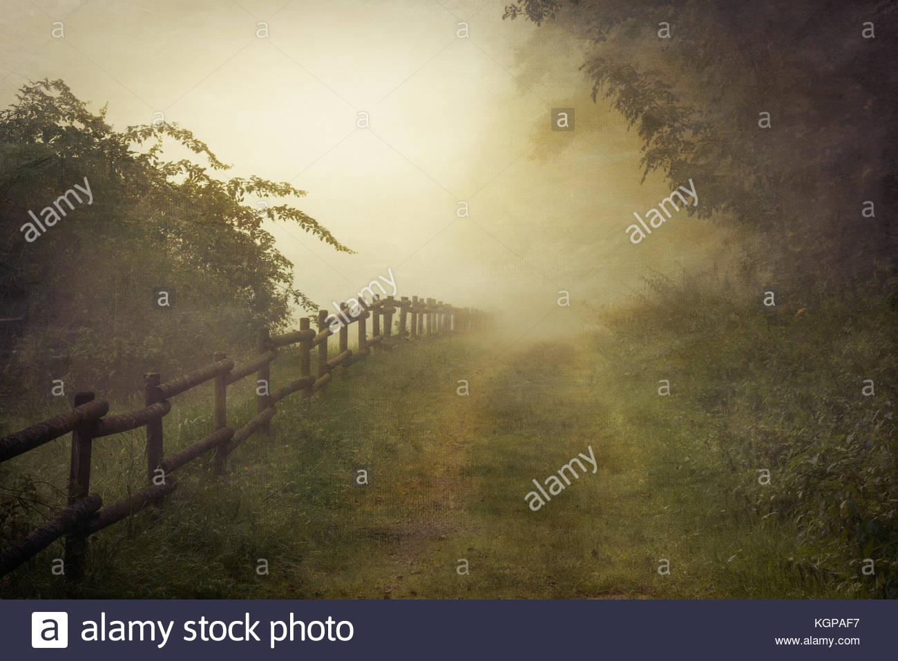 A path into the unknown mist. A magical misty morning in Hünfeld Germany, hometown of one the people credited - Stock Image