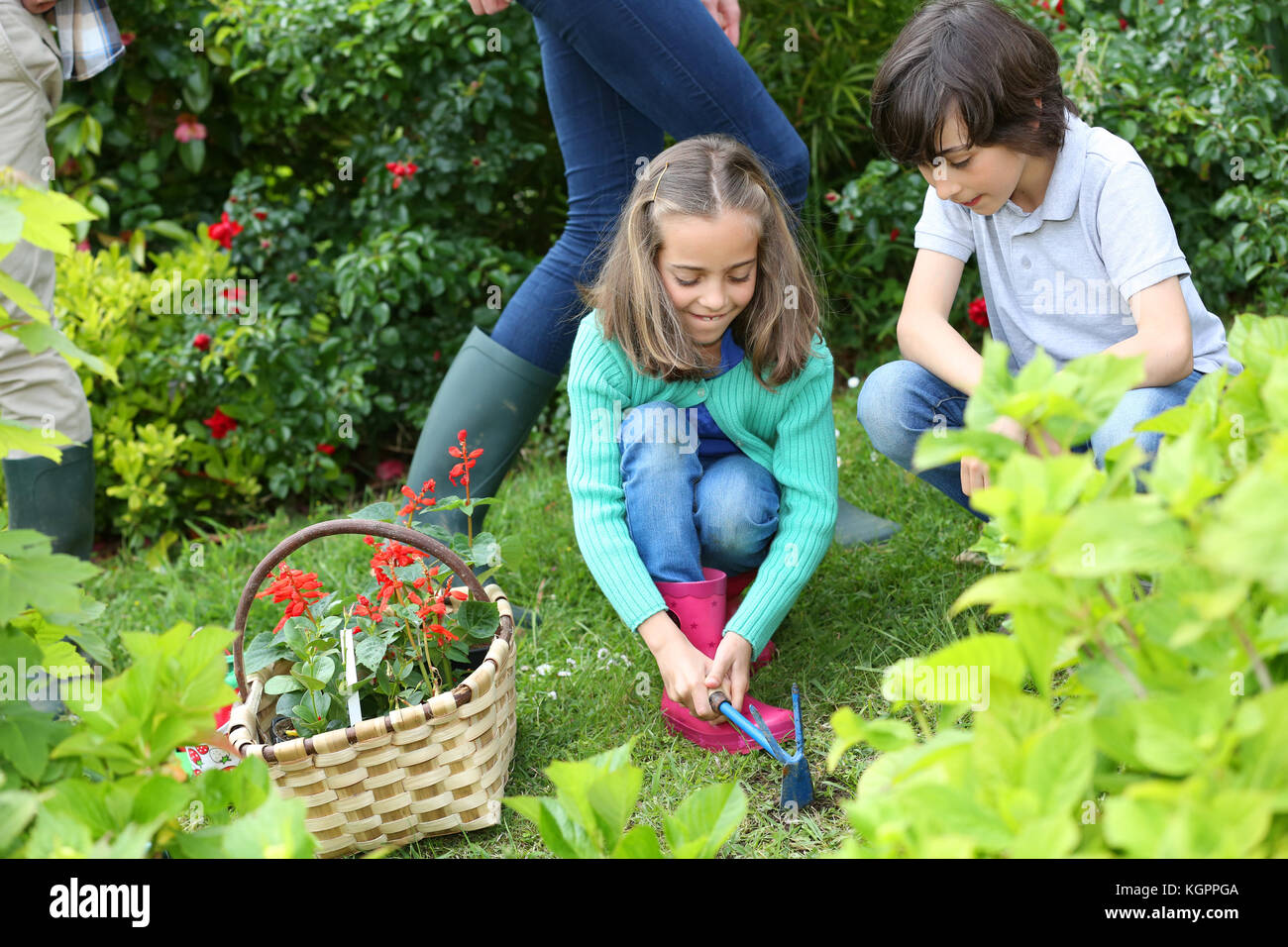 Kids gardening at home together in springtime - Stock Image