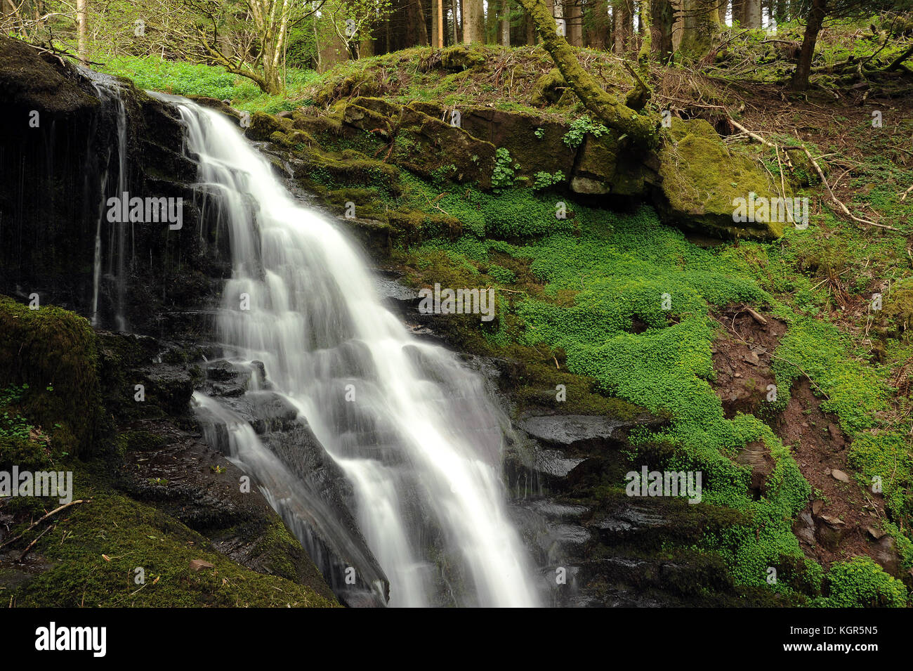 Penultimate waterfall on the Nant Bwrefwr. - Stock Image
