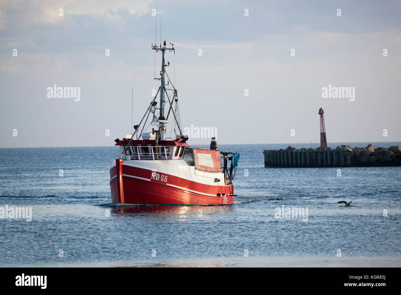 Danish fishing trawler returning to harbour in early morning, Gilleleje, Kattegat Coast, Zealand, Denmark, Europe - Stock Image