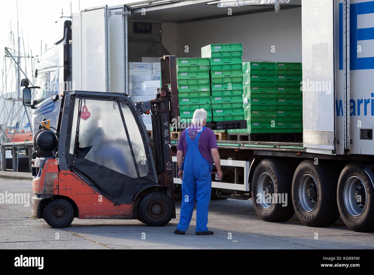 Loading fish palettes into back of lorry, Gilleleje, Kattegat Coast, Zealand, Denmark, Europe - Stock Image