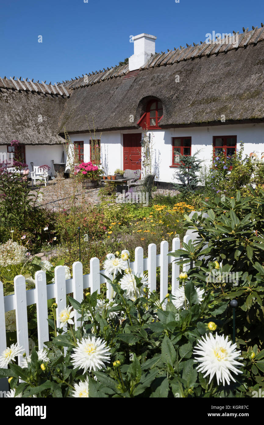 Traditional white painted thatched Danish cottage and garden with white picket fence, Gilleleje, Kattegat Coast, - Stock Image