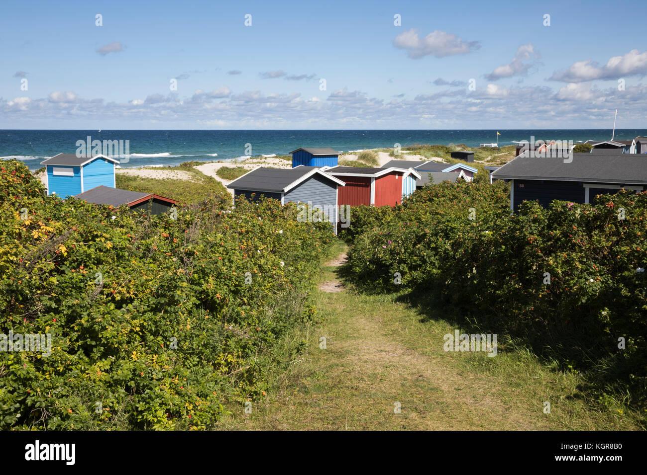Beach huts among sand dunes with blue sea behind, Tisvilde, Kattegat Coast, Zealand, Denmark, Europe - Stock Image