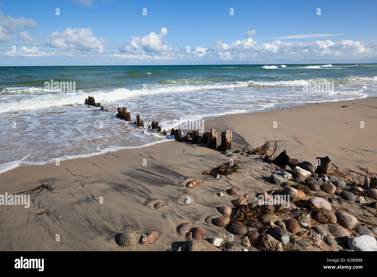 Old wooden posts and pebbles on sand beach with breaking waves and cumulus clouds, Rageleje, Kattegat Coast, Zealand, - Stock Image
