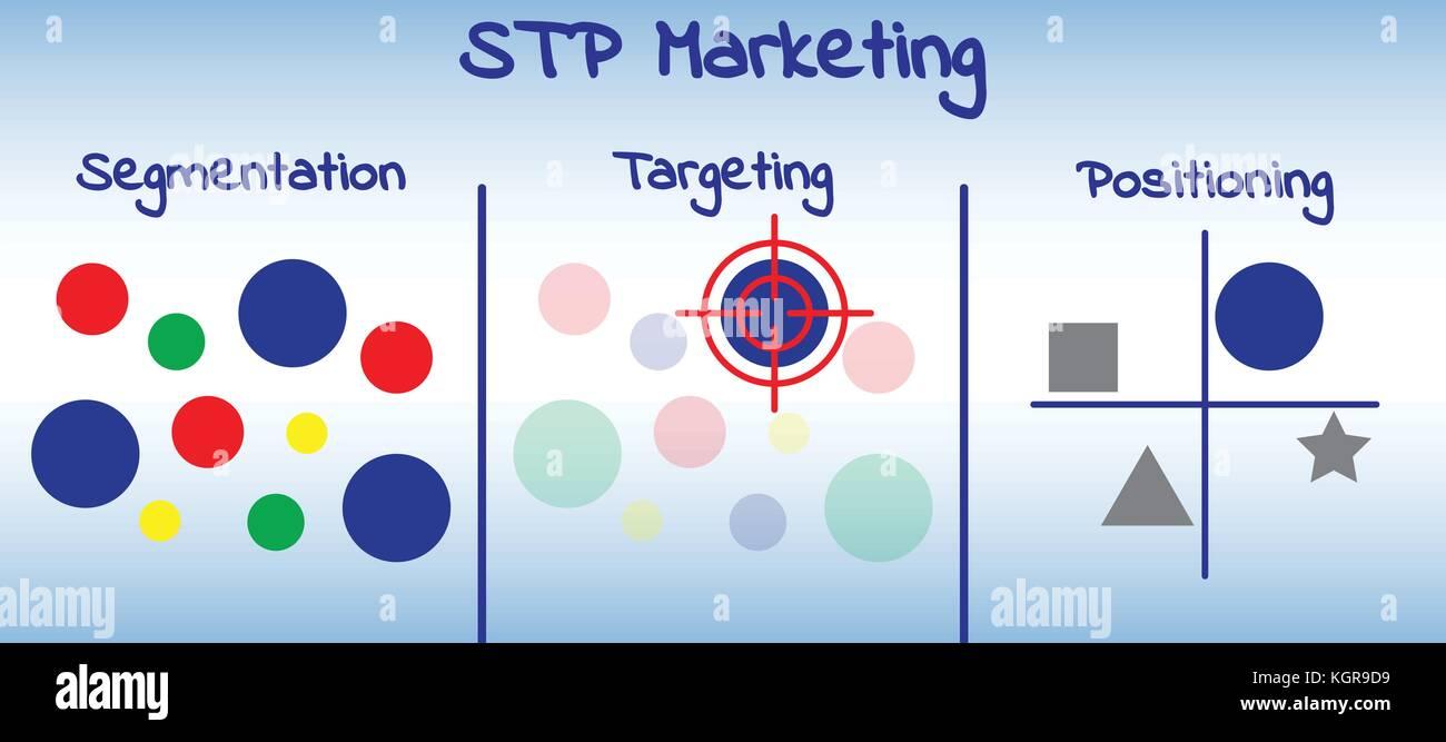 vector illustration plan and model of stp marketing