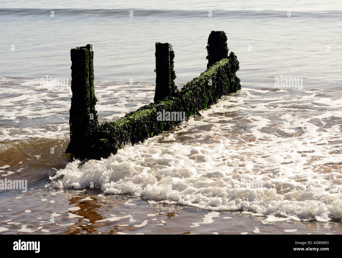Remains of a groyne. - Stock Image