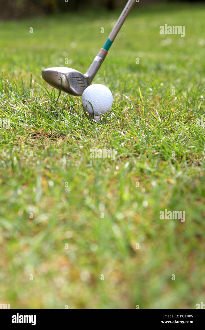 Closeup on golf tee - Stock Image