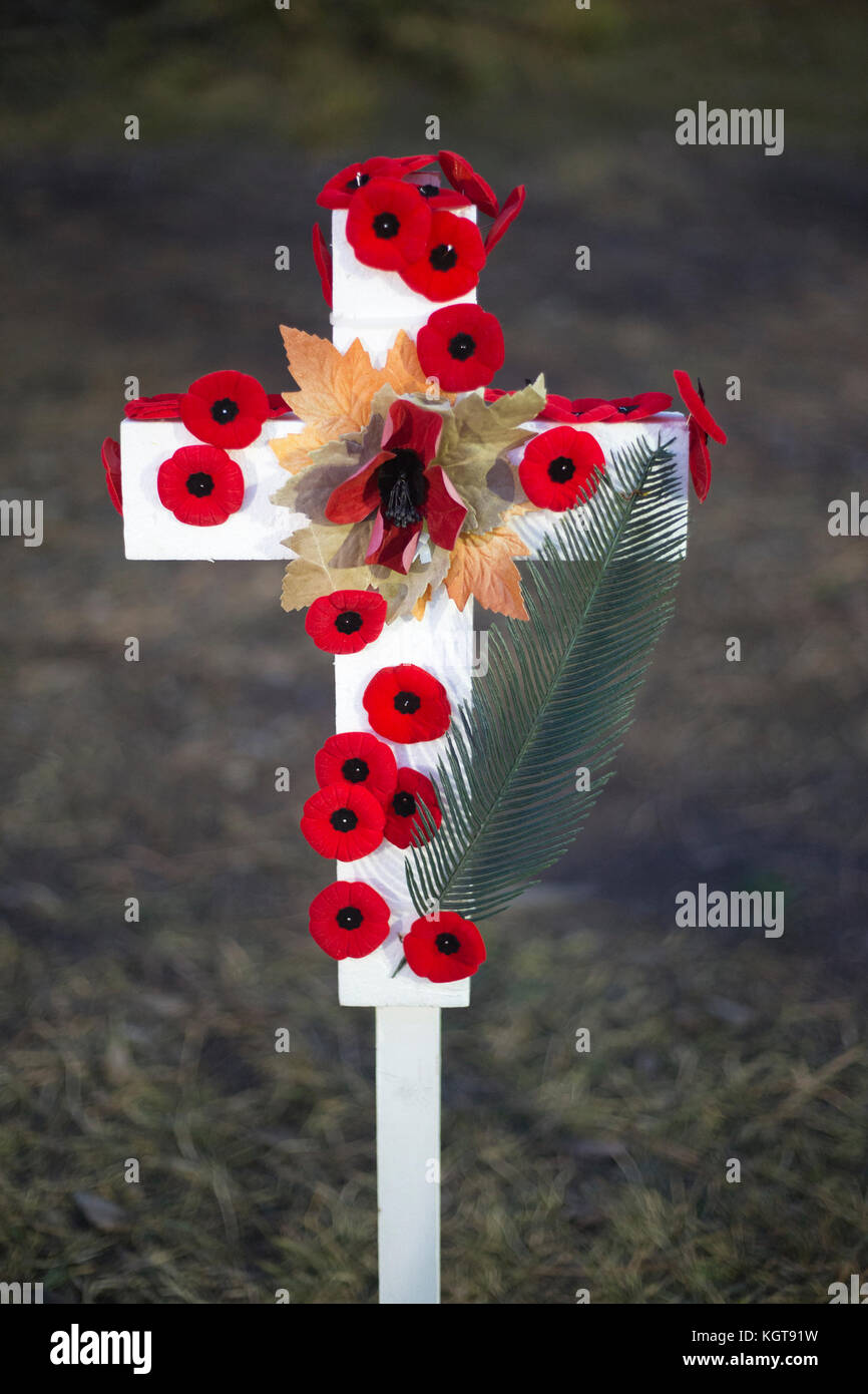 Field of Crosses memorial for fallen soldiers on Remembrance Day - Stock Image
