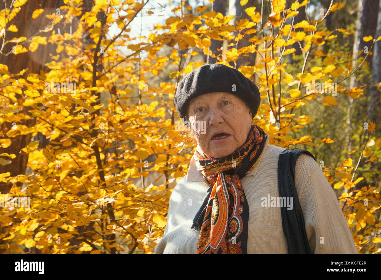 Angry old woman feels the outrage in autumn park - Stock Image