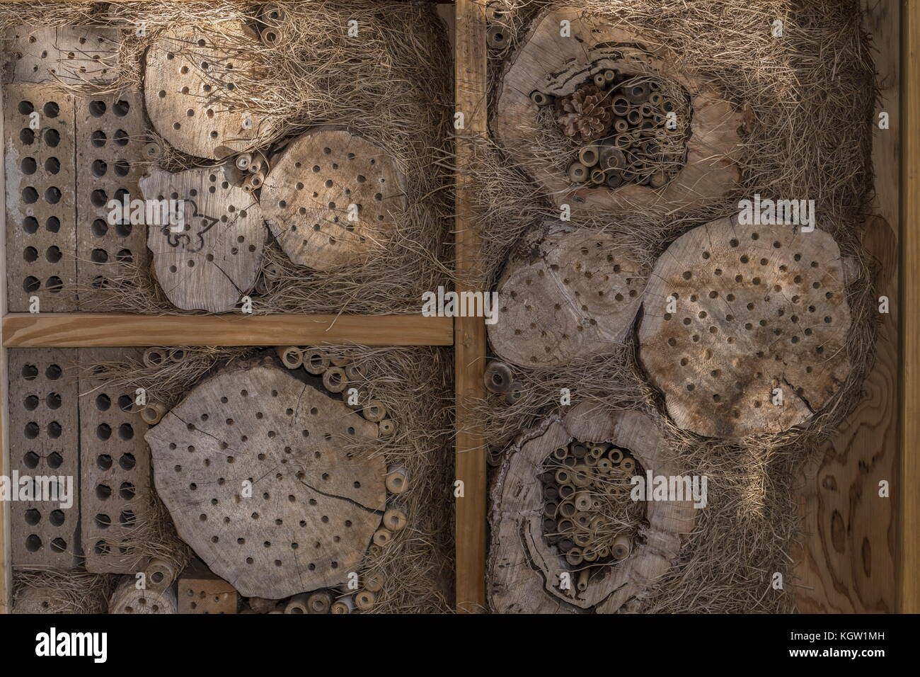 Bee house, to attract solitary bees to nest. Stock Photo