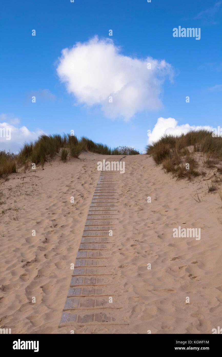 Netherlands, Zeeland, boardwalk through the dunes in the nature reserve de Manteling between Domburg and Oostkapelle - Stock Image