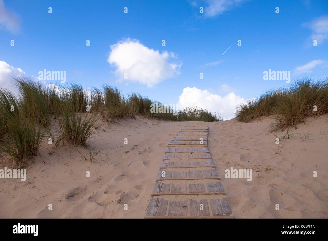Netherlands, Zeeland, boardwalk through the dunes in the nature reserve de Manteling between Domburg and Oostkapelle Stock Photo