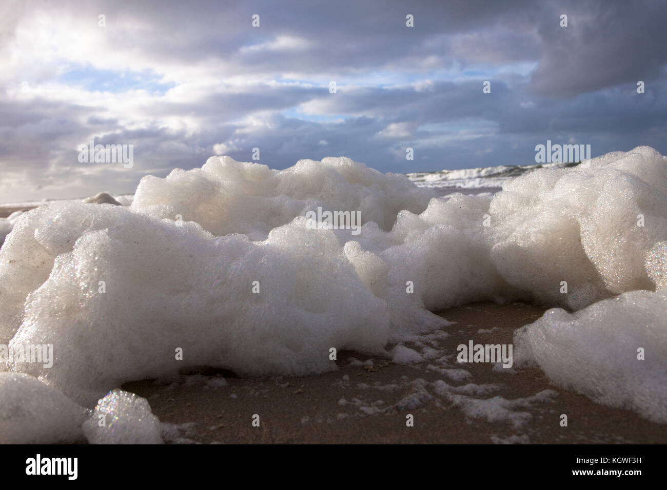 Netherlands, Zeeland, foam caused by the death of algae blooms on the beach between Oostkapelle and Domburg on the - Stock Image