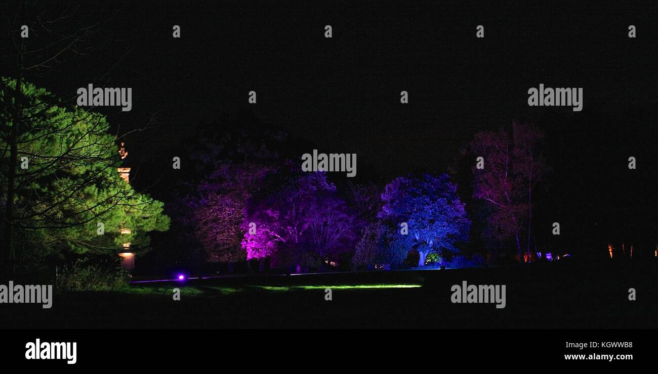 Syon Park the enchanted forest 2017 - Stock Image