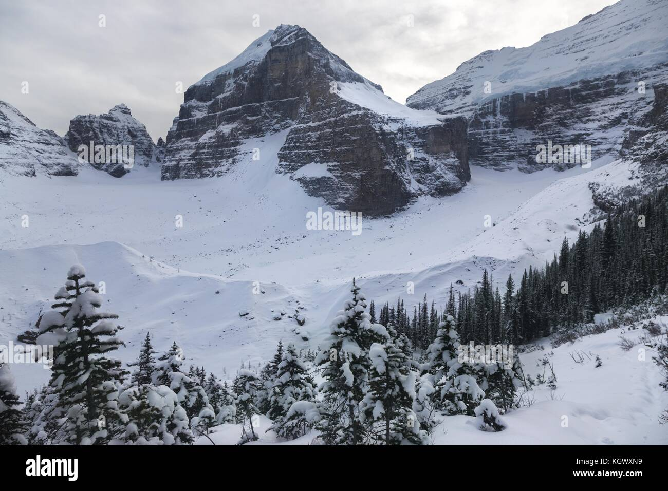 Winter Landscape and Distant Snowcapped Mountains on Plain of Six Glaciers Hiking Trail above Lake Louise Banff - Stock Image