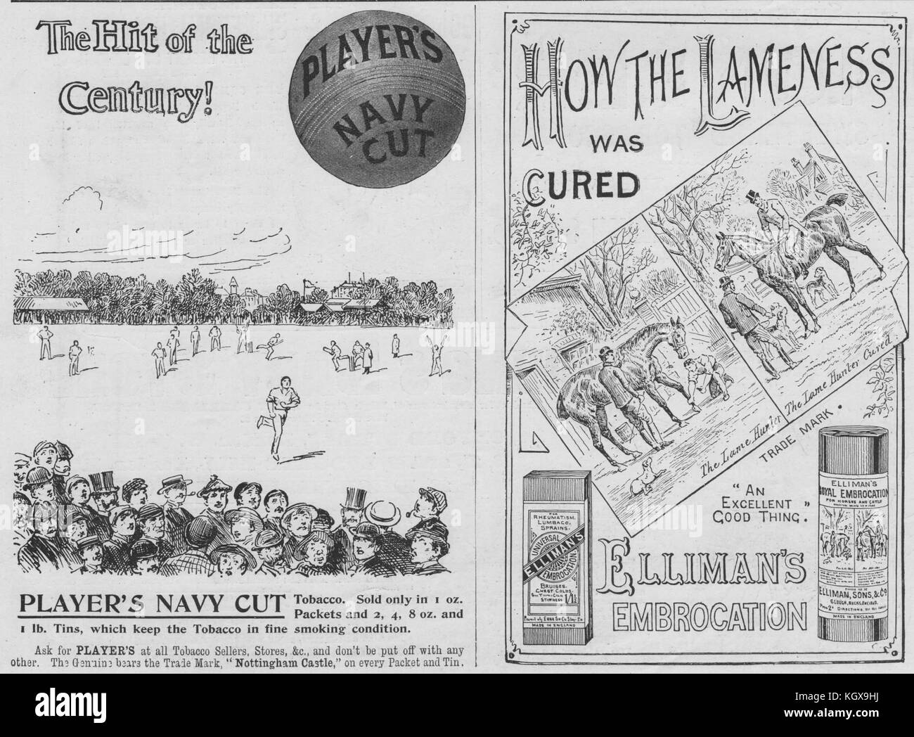 The hit of the Century Players Navy Cut. Elliman's Embrocation. Adverts 1897. The Illustrated London News - Stock Image