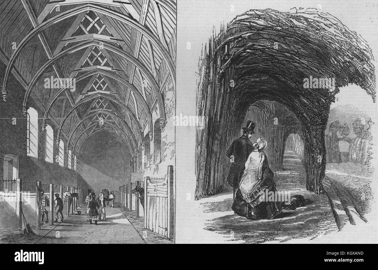 Hatfield House. Old palace (stables) hall; Vineyard garden. Hertfordshire 1846. The Illustrated London News - Stock Image