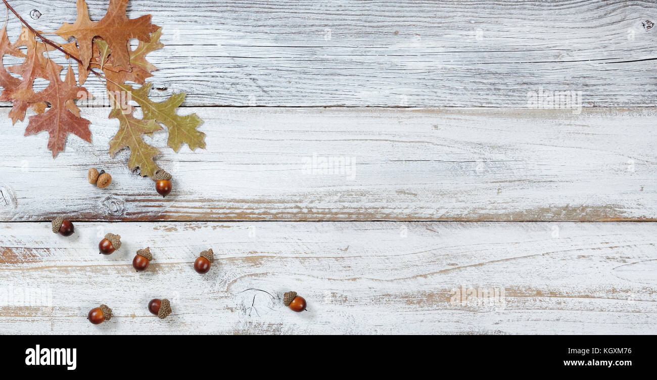 Seasonal Oak Leaf And Acorn Decorations Falling From Branch On