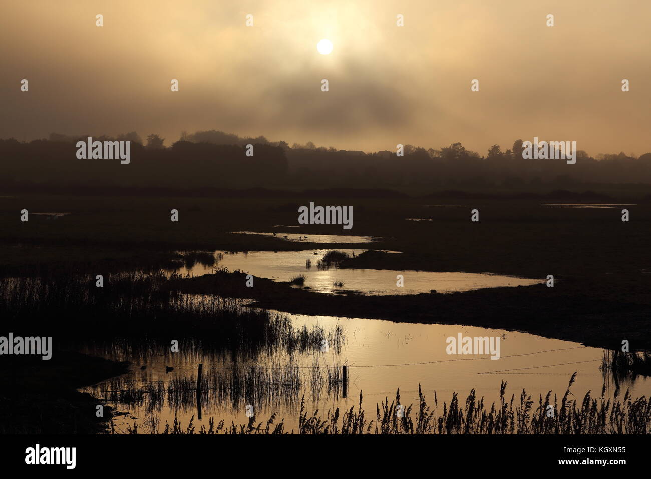 Sunset over wetlands in North Norfolk, UK.  Sunlight reflected in marshland waters.  Wildfowl roosting and feeding. - Stock Image
