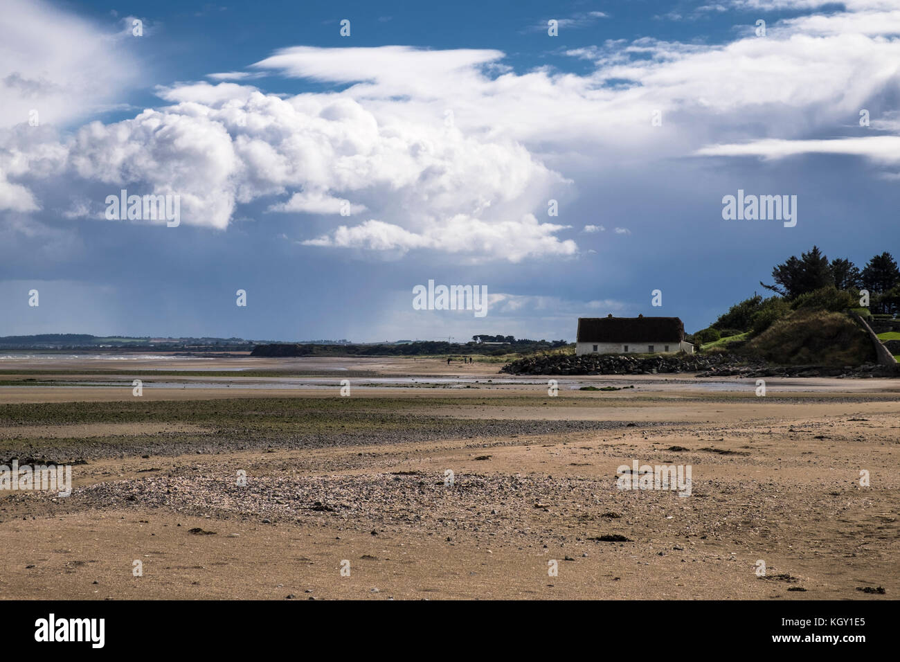 Laytown Archives - Shane Black Property