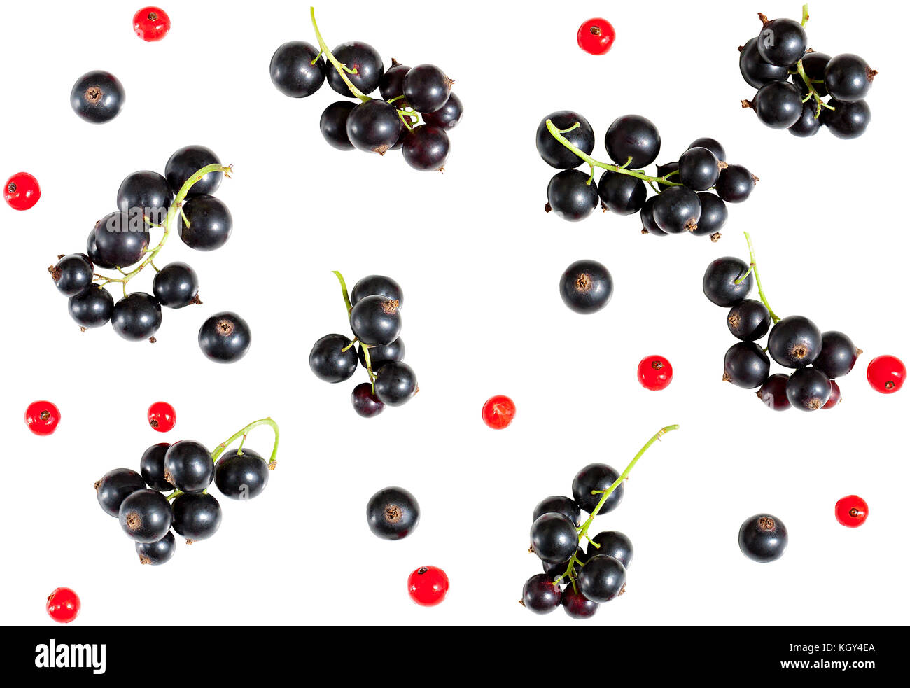 berries of black currant and red currant isolated on white background. flat lay, top view. seamless background Stock Photo