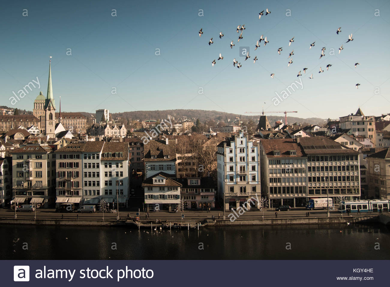Zurich landscape with river Limmat and birds flying in a flock. - Stock Image