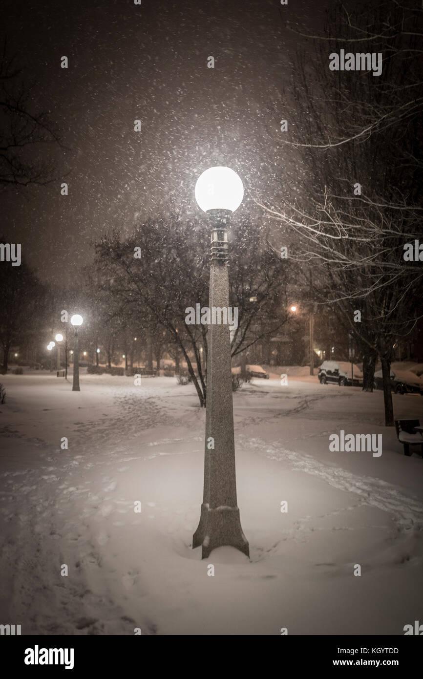 Evening winter scene - Stock Image