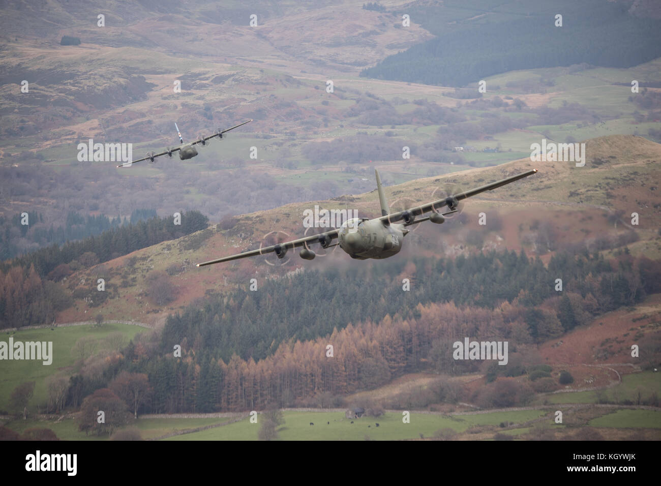 Royal Air Force two ship Hercules Flight conducting low flying training sortie in Snowdonia. - Stock Image