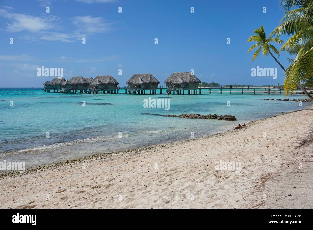 Tropical sandy beach with thatched bungalows on stilts in the lagoon, Tikehau atoll, Tuamotus, French Polynesia, - Stock Image