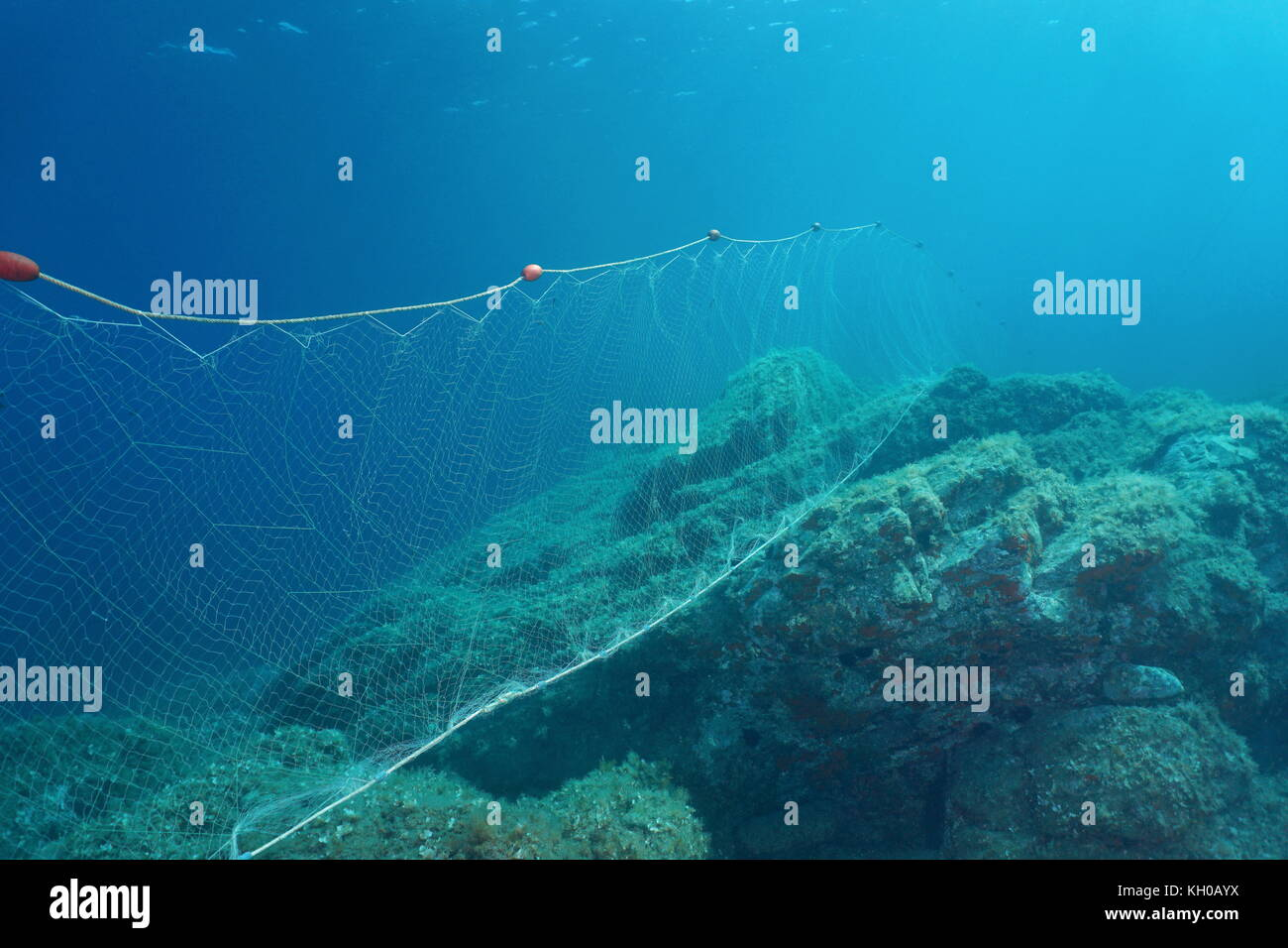 Underwater a fishing net (gillnet) fixed on rocks on the seabed, Mediterranean sea, Costa Brava, Spain - Stock Image