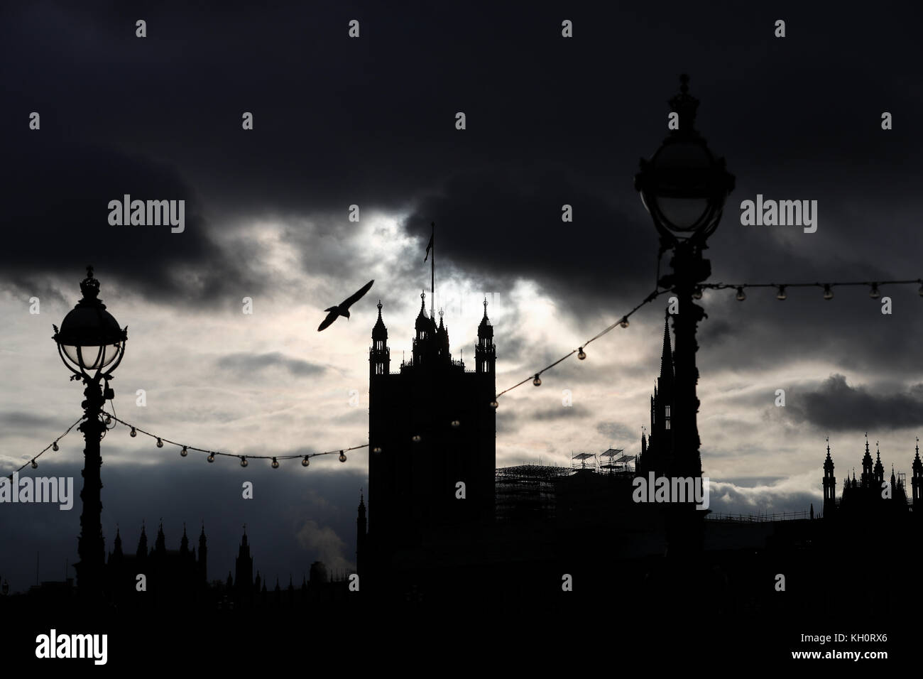 London, UK. 11th Nov, 2017. A seagull flies by the river Thames backed by the silhoutte of the Westminster Place Stock Photo