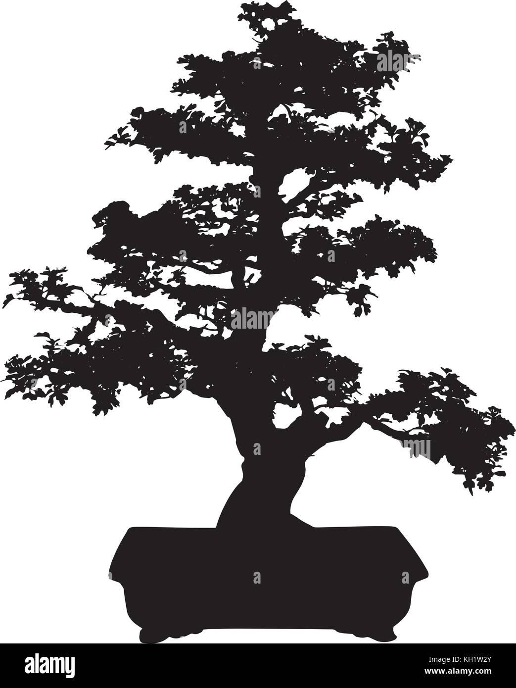 Bonsai Pine Tree Vector Stock Vector Art Illustration