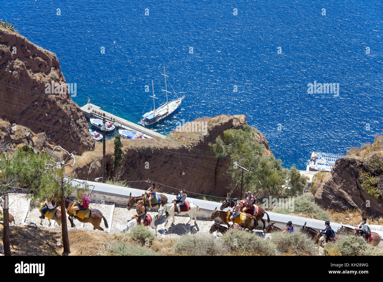 Tourist attraction ride with donkeys 700 steps upstairs from the harbour to Thira, Santorin island, Cyclades, Aegean, - Stock Image
