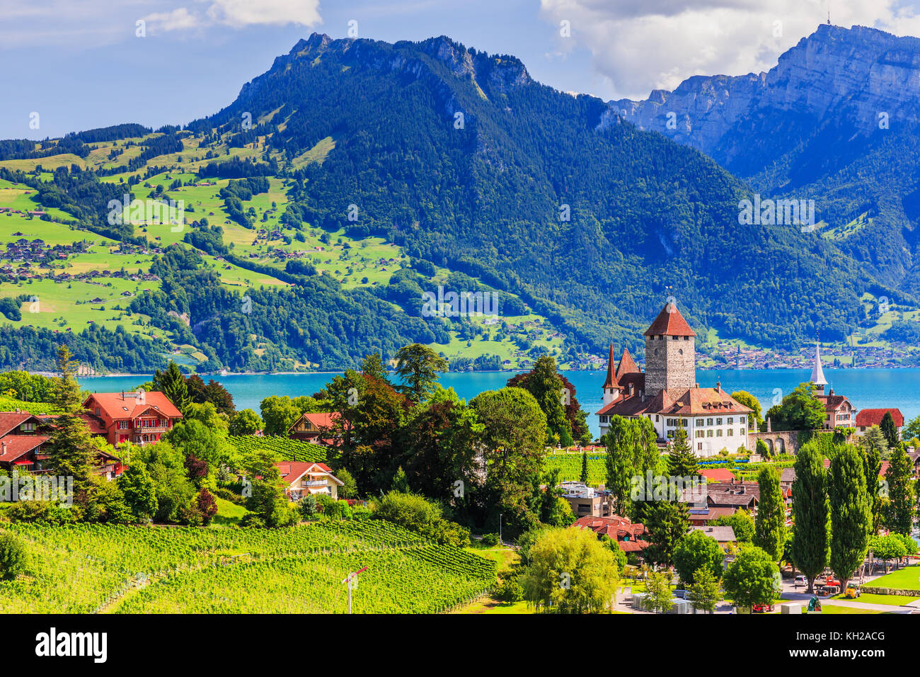 Spiez, Switzerland. The town of Spiez by Thun lake in the Berner Oberland. - Stock Image
