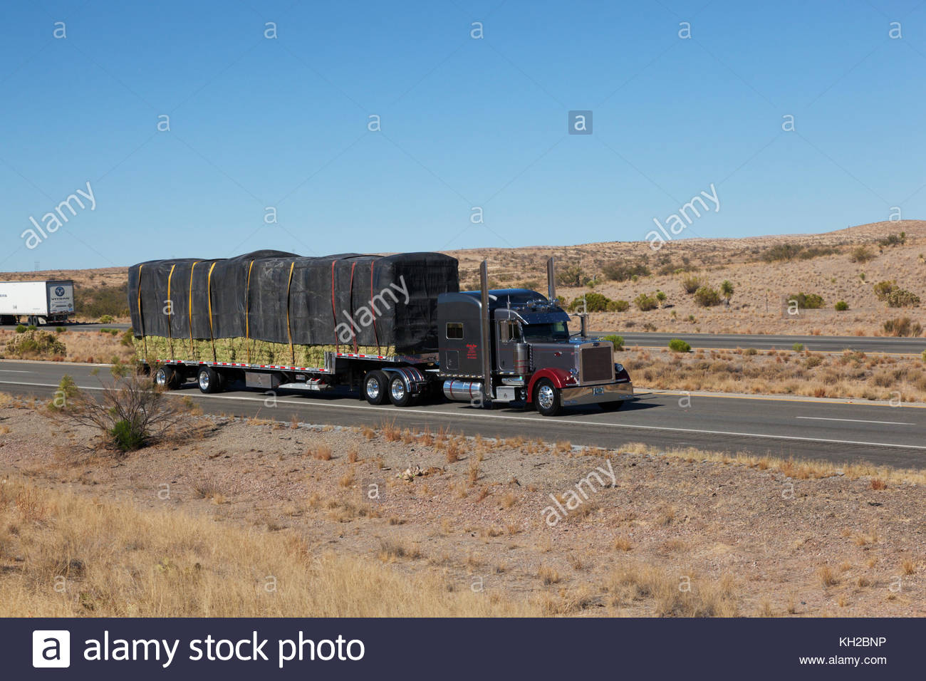 Semi-tractor trailer hauling hay in southeastern Arizona, USA, driver visible Stock Photo