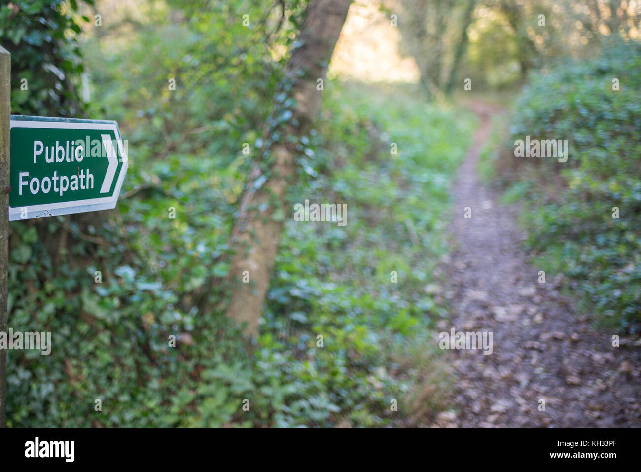 Public footpath sign in Devon woodland - Stock Image