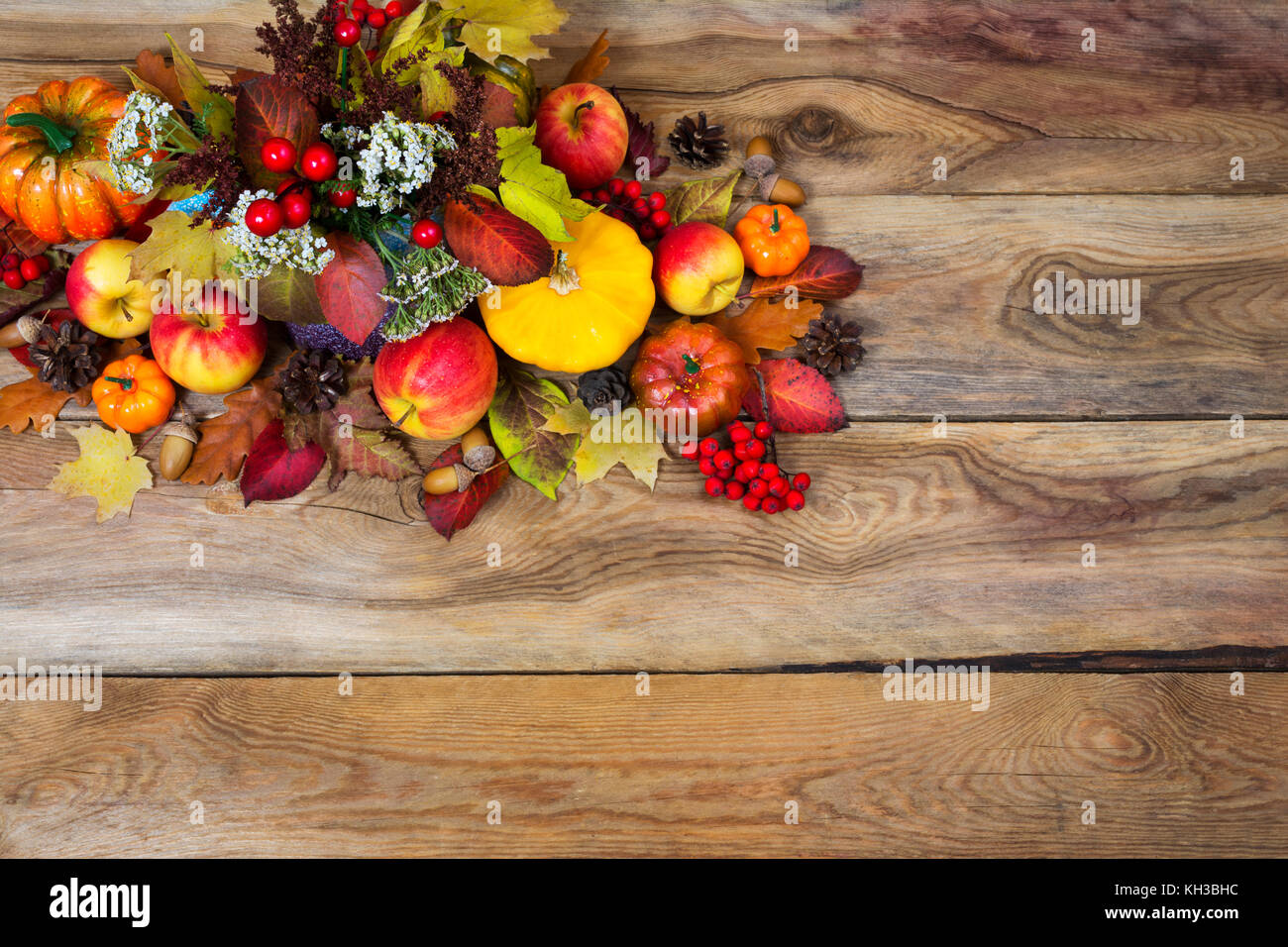 Fall Rustic Background With Red Berries White Flowers Yellow Squash Apples Cones Acorns Colorful Leaves Copy Space