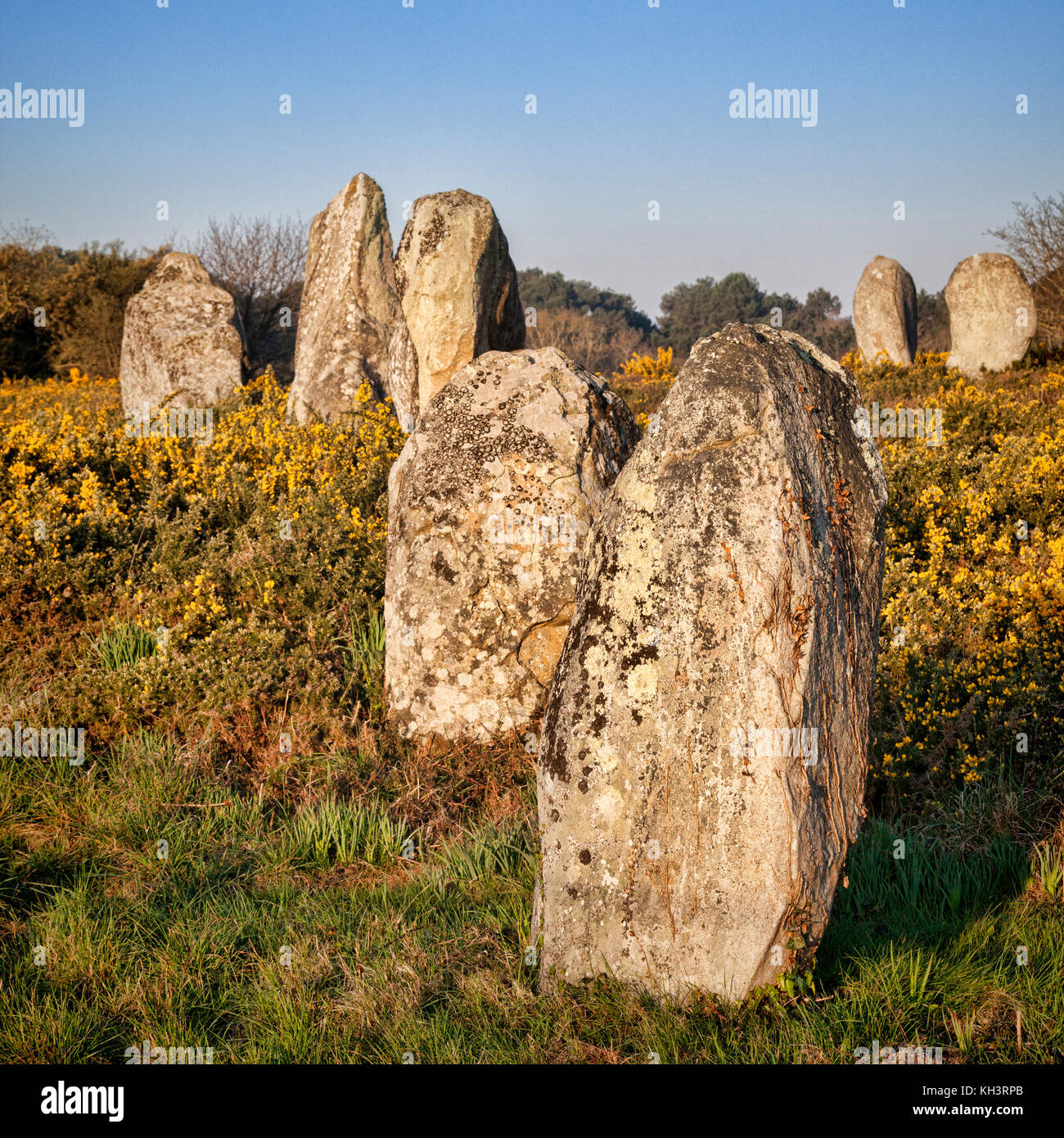 Carnac Alignments, Brittany, France - Stock Image