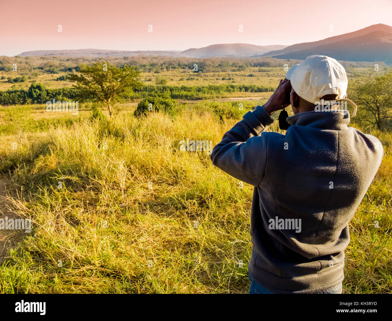 South Africa, ranger looking through binoculars in search of animals during a safari - Stock Image