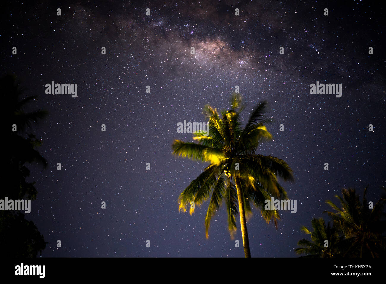 Milkyway behind palm trees in Indonesia - Stock Image