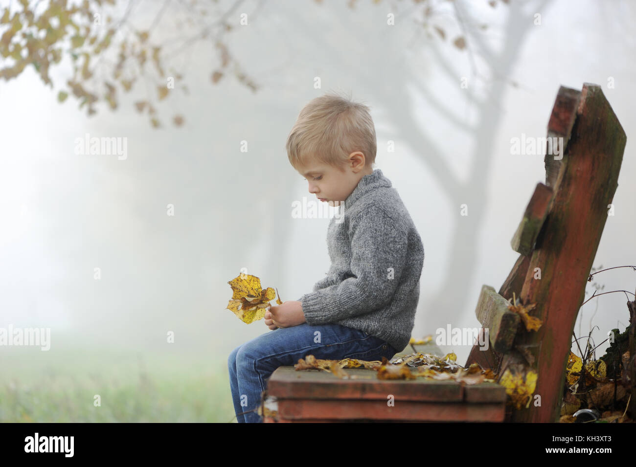 A four years old sad boy sitting on park bench in autumn, foggy day and holding  a few leaves in hands. Side profile - Stock Image