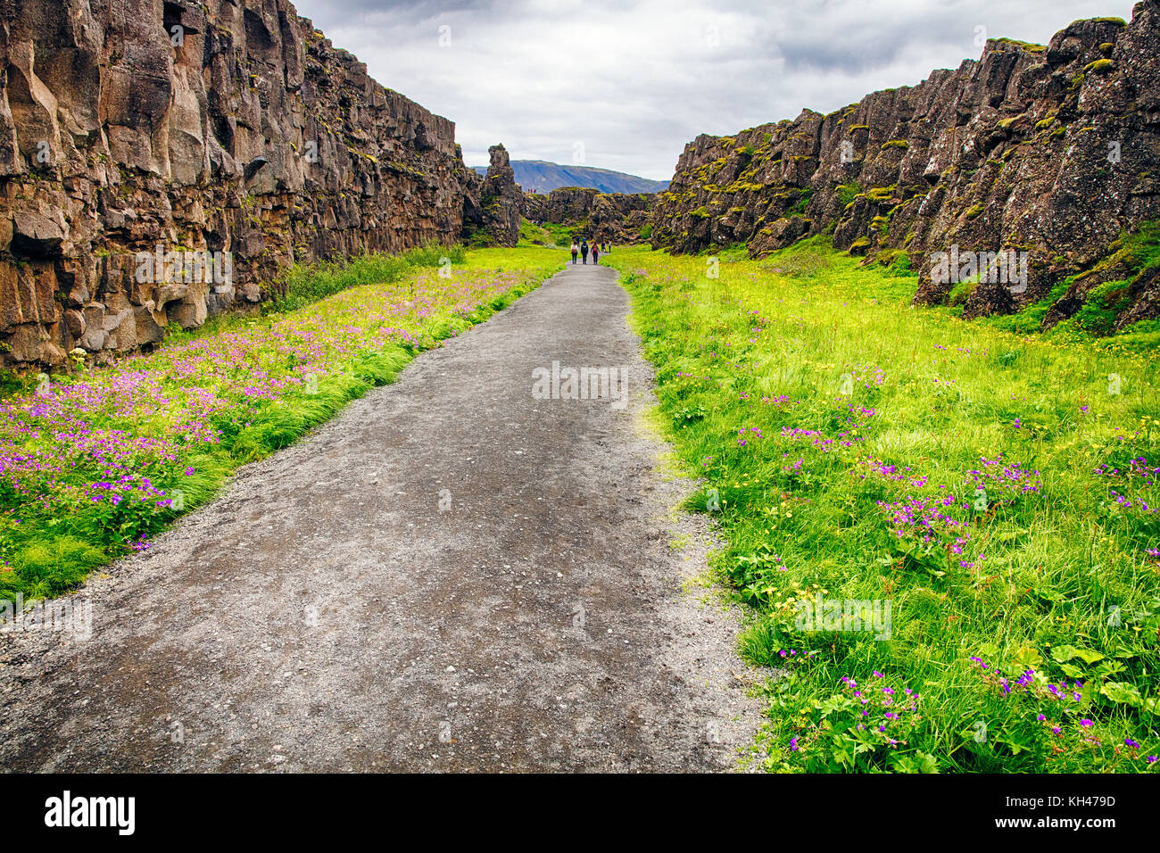 Walking Trail in a Thingvellir National Park, Iceland, Europe - Stock Image