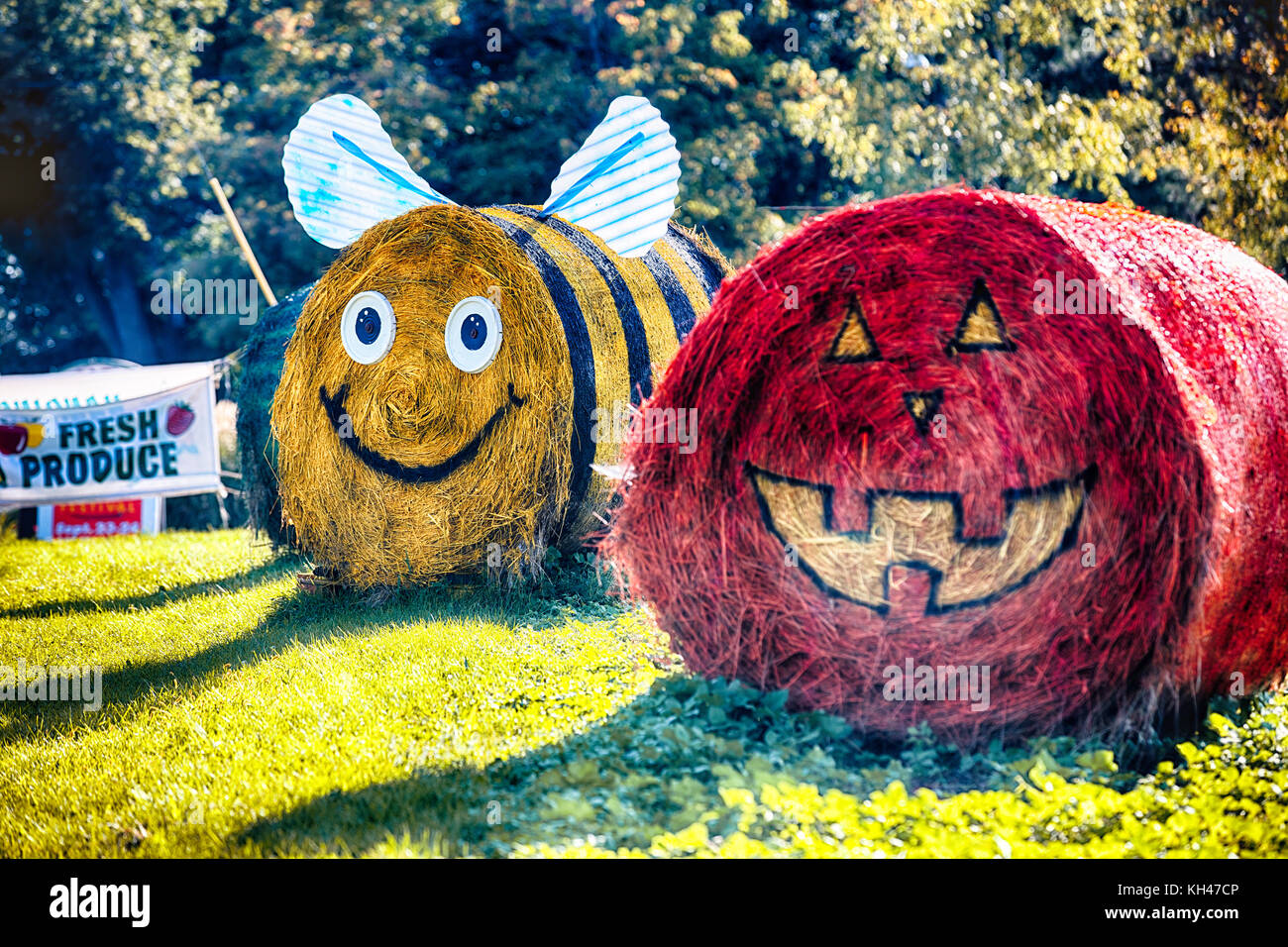 Hay Bale Decorations of a Pumpkin and Bumble Bee Resemblance on a Farmstand, New Jersey - Stock Image